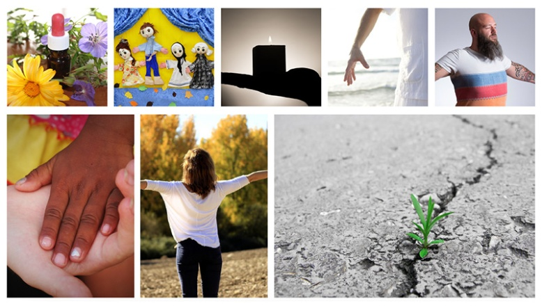 5-Imagenes-Sitio-Koru-Content-Final